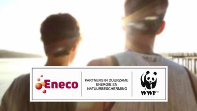 WNF-Eneco